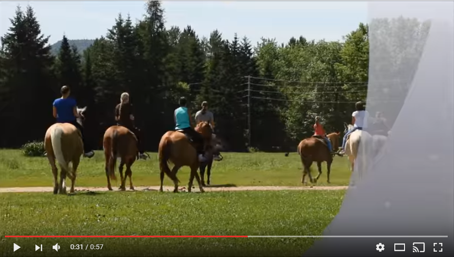 equitation video