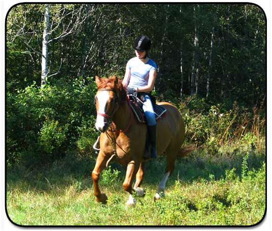 equitation-quebec